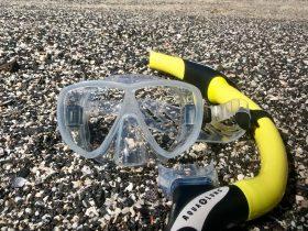 Snorkel photo